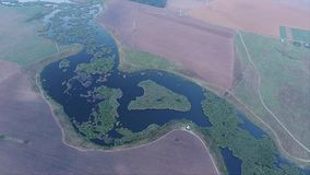 Opinião aérea do zangão sobre o lago e os campos video estoque