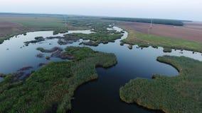Opinião aérea do zangão sobre o lago e os campos filme