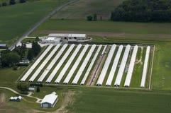 Opinião aérea dos celeiros corporativos modernos de Pólo da exploração agrícola de leiteria Foto de Stock Royalty Free