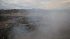 Opinião aérea a grama seca que queima-se na terra video estoque
