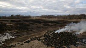 Opinião aérea a grama seca que queima-se na terra filme