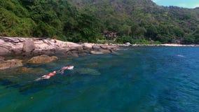 A opinião aérea os povos nada no mar com máscara perto das rochas no dia ensolarado do verão video estoque