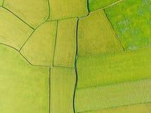 Opinião aérea Paddy Field do distrito de Dongshan, Yilan, Taiwan fotos de stock royalty free