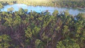 Opinião aérea Ski Boat em Murray River Australia vídeos de arquivo