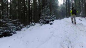 Opinião aérea um turista que anda na floresta do inverno nos Carpathians vídeo 4K filme