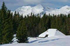 Opinião alpina da cabana Foto de Stock Royalty Free