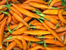 Opinião amarela do close up das pimentas de pimentão Fotografia de Stock