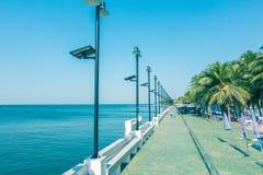 Opinião bonita da palmeira do beira-mar fotografia de stock