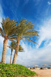 Opinião bonita da praia fotos de stock royalty free