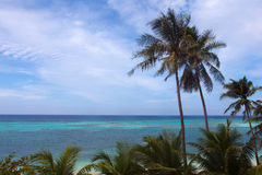 Opinião bonita de turquesa do mar com palmeiras Foto de Stock