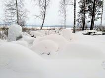 Opinião bonita do inverno perto do lago gelado na tarde imagens de stock