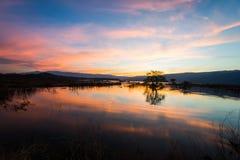 Opinião bonita do lago do por do sol no crepúsculo Fotografia de Stock
