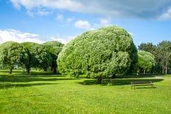 Opinião bonita do parque Imagens de Stock Royalty Free