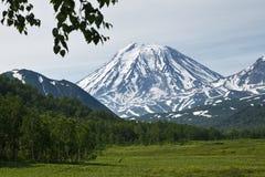 Opinião bonita do verão do vulcão de Koriaksky - vulcão ativo de K Imagens de Stock