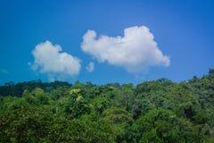 Opinião bonita tropical da paisagem da montanha enevoada da floresta úmida no dia nebuloso com o céu azul no fundo Imagens de Stock
