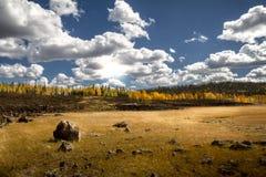 Opinião brilhante lindo do outono da floresta de Dixie National com um grande campo, uma rocha da lava, e umas folhas outonais fotos de stock