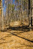 Opinião Buck Mountain Trail fotos de stock