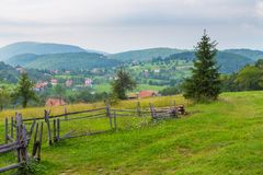 Opinião cênico da paisagem na montanha de Tara, Sérvia fotos de stock royalty free