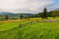Opinião cênico da paisagem na montanha de Tara, Sérvia imagens de stock royalty free