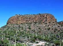 Opinião cênico de floresta nacional de Tonto de Mesa, o Arizona ao lago o Arizona canyon, Estados Unidos fotografia de stock