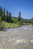 A opinião cênico do rio de North Fork Gunnison no parque estadual de Paonia, Colorado fotos de stock royalty free
