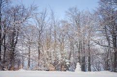 Opinião cênico e boneco de neve da paisagem da floresta nevado Fotografia de Stock