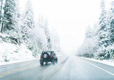 Opinião cênico os povos pequenos que andam na montanha da neve, Washington, Imagens de Stock