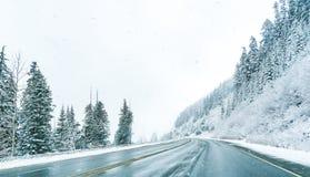 Opinião cênico os povos pequenos que andam na montanha da neve, Washington, Fotos de Stock Royalty Free