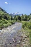 A opinião cênico veertical do rio de North Fork Gunnison no parque estadual de Paonia, Colorado imagens de stock