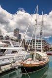 Opinião da cidade de Auckland foto de stock