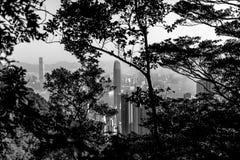Opinião da cidade de Hong Kong em preto e branco Foto de Stock