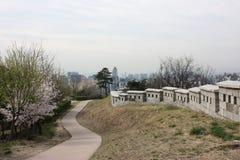 Opinião da cidade em Seoul, Coreia do Sul Foto de Stock Royalty Free