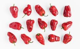 Opinião da configuração do plano das pimentas vermelhas Fotos de Stock