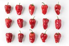 Opinião da configuração do plano das pimentas vermelhas Fotos de Stock Royalty Free