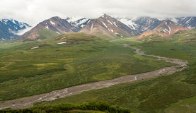 Opinião da cordilheira no parque de Denali, Alaska Imagens de Stock Royalty Free