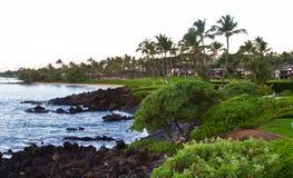 Opinião da costa de Maui Fotografia de Stock