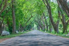 Opinião da estrada Imagens de Stock