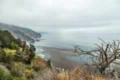 Opinião da estrada da Costa do Pacífico Foto de Stock