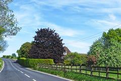 Opinião da estrada a Leeds Castle em Kent Fotos de Stock