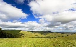 Opinião da exploração agrícola dos carneiros Fotografia de Stock Royalty Free