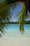 Opinião da lagoa Imagem de Stock Royalty Free