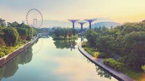 Opinião da manhã de jardins de Singapura Fotografia de Stock