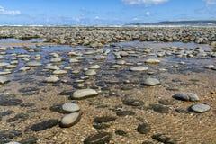 Opinião da maré baixa - praia de Northam e vista para o estuário de Taw-Torridge, com areias de Saunton e ponto entufado fotografia de stock
