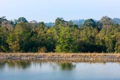opinião da margem do reservatório no parque nacional de Khaoyai Imagens de Stock Royalty Free