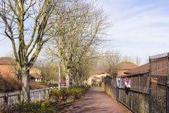 Opinião da mola na área da cinza de duas milhas em Milton Keynes, Inglaterra imagens de stock