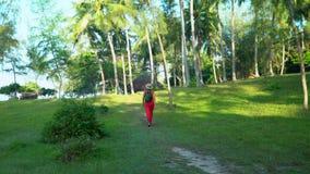 Opinião da mulher de uma parte traseira viajante Console tropical A mulher anda com uma trouxa Palmeiras altas na ilha vídeos de arquivo