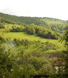 Opinião da natureza em Stara Planina, Bulgária. Imagens de Stock