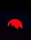 Opinião da noite Ilustração do Vetor