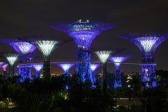 Opinião da noite do jardim singapore Fotografia de Stock