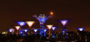 Opinião da noite dos jardins pela baía em singapore Imagem de Stock